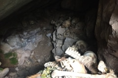 Ollantaytambo Quarry