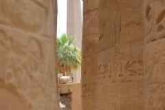 Temple of Life - Karnak Temple