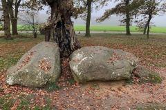 Dolmen D21-D22 Bronneger