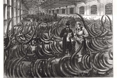 Siberian-Mammoth-Tusks-On-The-Ivory-Floor-At-The-London-Docks-July-1873-Ilnmed